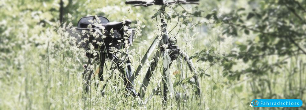 fahrradschloss-kaufen